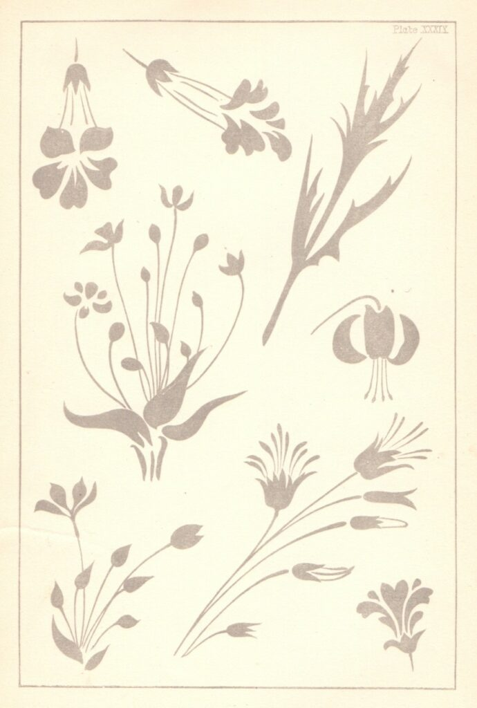 Design plate taken from the Elementary Art Teaching by E.R. Taylor, 1890.